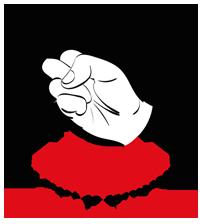 Shinseikyu Karate Academy Logo